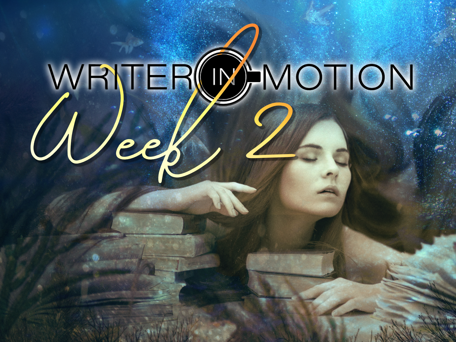 WIM Week 2